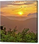 Soaring At Sunrise - Blue Ridge Parkway I Canvas Print