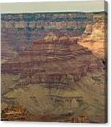 Soaring Through The Canyons Canvas Print
