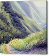 Soberanes Canyon  Canvas Print