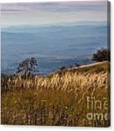 Sofia Valley From Vitosha Mountain October Early Twilight Canvas Print