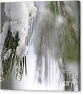 Soft Ice Canvas Print