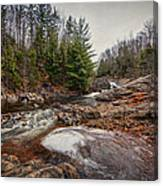 Soft Maple Water Fall Canvas Print
