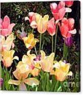 Soft Spring Colors Canvas Print