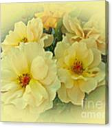 Softly And Sweetly Canvas Print