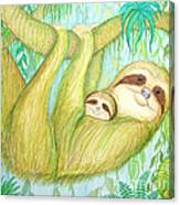 Soggy Mossy Sloth Canvas Print
