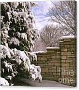 Solid Winter Canvas Print