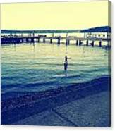 Solitary Swimming  Canvas Print