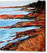 Solitude At Sunset Canvas Print
