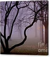 Solitudes Glow Canvas Print