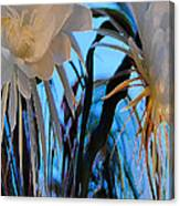 Some Serious Flowers Canvas Print