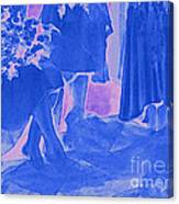 Something Old Something New Something Borrowed Something Blue By Jrr Canvas Print