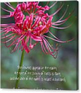 Song Of Solomon - The Flowers Appear Canvas Print