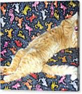 Sonny Cat On Sacred Cat Quilt Canvas Print