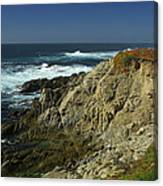 Sonoma Coast 1 Canvas Print