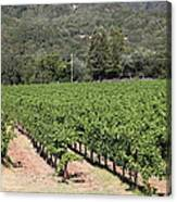 Sonoma Vineyards In The Sonoma California Wine Country 5d24632 Canvas Print
