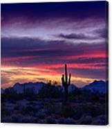 Sonoran Desert Skies  Canvas Print