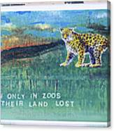 Soon Only In Zoos  Their Land Lost Canvas Print