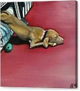 Sooo Sleepy Canvas Print