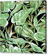 Soothing Tropics Canvas Print