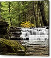 Soothing Waters Canvas Print