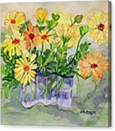 Sophie's Calendulas Canvas Print