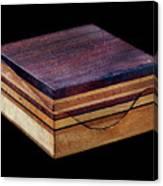 Sopwith Model I: Stratified Canvas Print