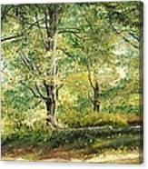 Sorica Mountain Canvas Print