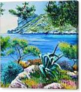 Sormious Cove Canvas Print