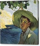 Sorollajoaqu�n 1863-1923. Boy With Hat Canvas Print
