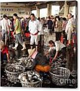 Sorting Fresh Squid Into Baskets Canvas Print