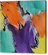 Soul Patch Canvas Print