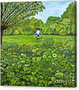 Sound Of Nature By Kevin Davis Canvas Print