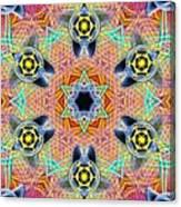 Source Fabric K1 Canvas Print