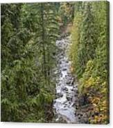 south fork Snoqualmie river Canvas Print