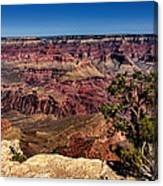 South Rim. Grand Canyon Canvas Print