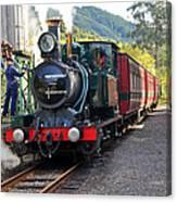 South West Wilderness Railway Canvas Print