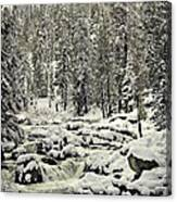 South Yuba River Canvas Print