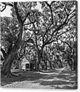 Southern Lane Monochrome Canvas Print