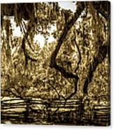 Southern Living Canvas Print