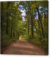 Southern Missouri Country Road II Canvas Print
