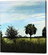 Southern Serenity Canvas Print