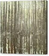 Southern Swamp Canvas Print
