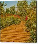 Southgate Boardwalk Retro Canvas Print