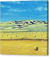 Southwest Sask. Canvas Print