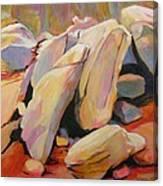 Southwest Stillness 2 Canvas Print
