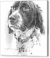 Spaniel Dog Pencil Portrait Canvas Print