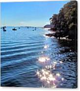 Sparkles And Twinkles Canvas Print