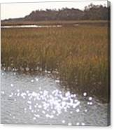 Sparkling  Marsh Canvas Print