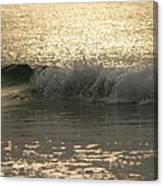 Sparkling Sea In Hunting Island Dawn Canvas Print
