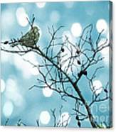 Sparrow In A Branch Canvas Print
